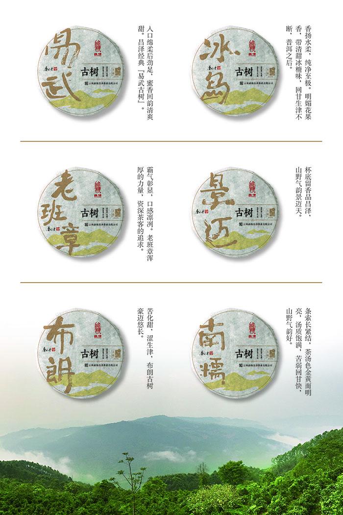 普洱茶品牌系列包装设计